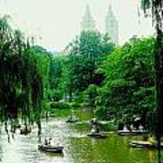 Central Park Pond Art Print