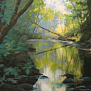 Champagne Creek Art Print