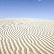 Chihuahuan Desert Dunes Art Print