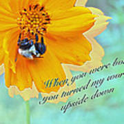 Child Birthday Greeting From Parent Parents - Cosmos And Bumblebee Art Print