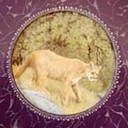 Chilean Puma Art Print