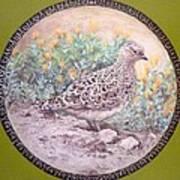 Chilean Tinamou Art Print