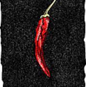 Chilli Pepper, Woodcut Art Print by Gary Hincks