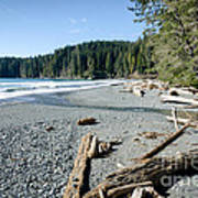 China Wide China Beach Juan De Fuca Provincial Park Vancouver Island Bc Canada Art Print by Andy Smy