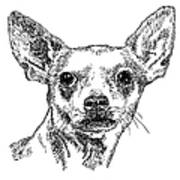 Chiwawa-portrait-drawing Art Print