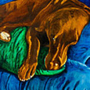 Chocolate Lab On Couch Art Print