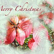 Christmas Card - Virginia Creeper In Autumn Colors Art Print