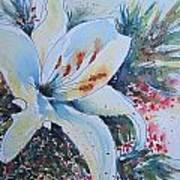 Christmas Lily Art Print