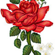 Christmas Rose 2011 Art Print
