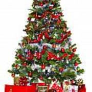 Christmas Tree And Presents Isolated On White Art Print