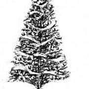 Christmas Tree Bw Art Print