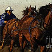 Rodeo Chuckwagon Racer Art Print