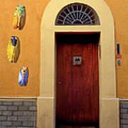 Cicada Door Arles France Art Print