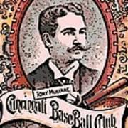 Cincinnati Baseball Art Print