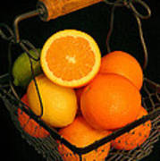 Citrus Fruit Basket Art Print