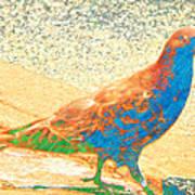 Citybird Art Print