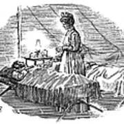 Clara Maass (1876-1901) Art Print
