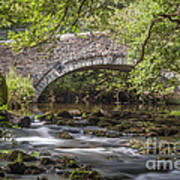 Clearbrook River Meavy Art Print by Donald Davis