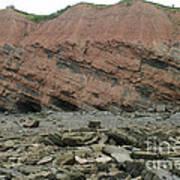 Cliffs At Joggins Nova Scotia Art Print