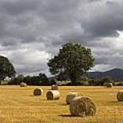 Clogheen, County Tipperary, Ireland Hay Art Print