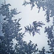 Close Up Of Ice Crystals Art Print
