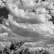 Clouds Rising Bw Palm Springs Art Print