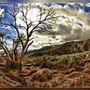Cloudy Valley  Art Print