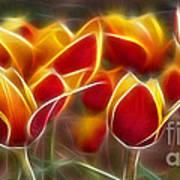 Cluisiana Tulips Fractal Art Print by Peter Piatt