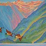 Coastal Fjord Art Print