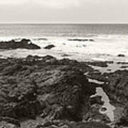 Coastal Tide Art Print