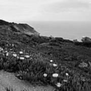 Coastal View Mist - Black And White Art Print