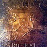 Coat Of Arms Bosnia  Art Print by Mak Art