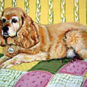 Cocker Spaniel On Quilt Art Print