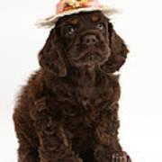 Cocker Spaniel Wearing A Hat Art Print