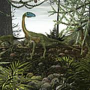 Coelophysis Dinosaurs Walk Amongst Art Print