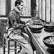 Coin Production, 19th Century Art Print