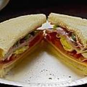 Cold Cut Sandwich Art Print