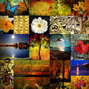 Collage Of Colors Art Print
