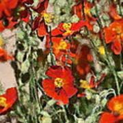 Color 82 Art Print