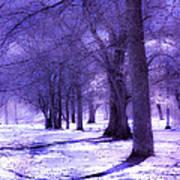 Color Infrared Winter Landscape Art Print