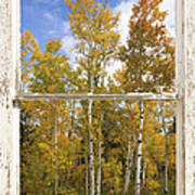 Colorado Autumn Aspens Picture Window View Art Print