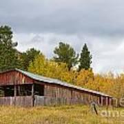 Colorado Rustic Autumn High Country Barn Art Print