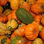 Colorful Gourds Art Print