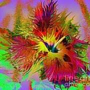 Colorful Hibiscus Art Print by Doris Wood
