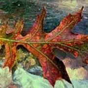 Colorful Oak Art Print