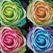 Colorful Rose Spirals Art Print