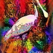 Colorful Spoonbill Art Print by Doris Wood