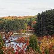 colors of fall in New England Art Print