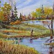 colours Of Elk Island Art Print