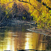 Columbia Bottoms Slough II Art Print